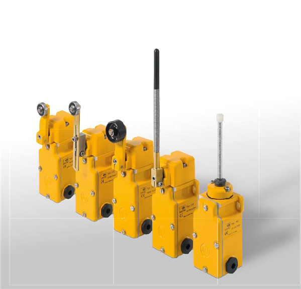 Robust Limit Switch VG